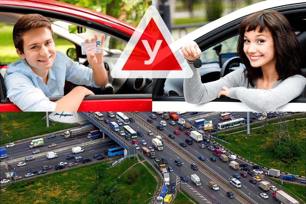 Как научиться водить машину? 8 советов начинающим водителям | dorpex.ru