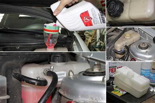 Как поменять охлаждающую жидкость: пошаговая инструкция, особенности и рекомендации