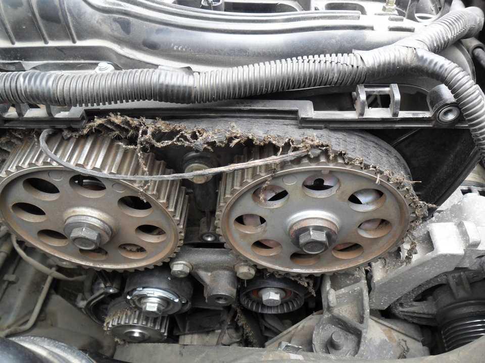Замена ремня грм ауди: как осуществляется на бензиновом и дизельном двс