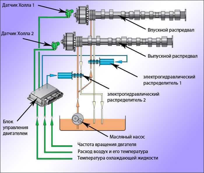 Системы изменения фаз газораспределения: сдвиг по фазе - «автоновости»